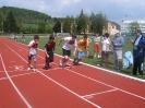 Župní přebor v atletice, Strakonice 2011