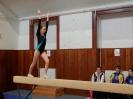 Župní přebor v gymnastice, Písek 13.4.2013