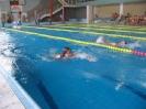 Župní přebor v plavání, Strakonice 2011